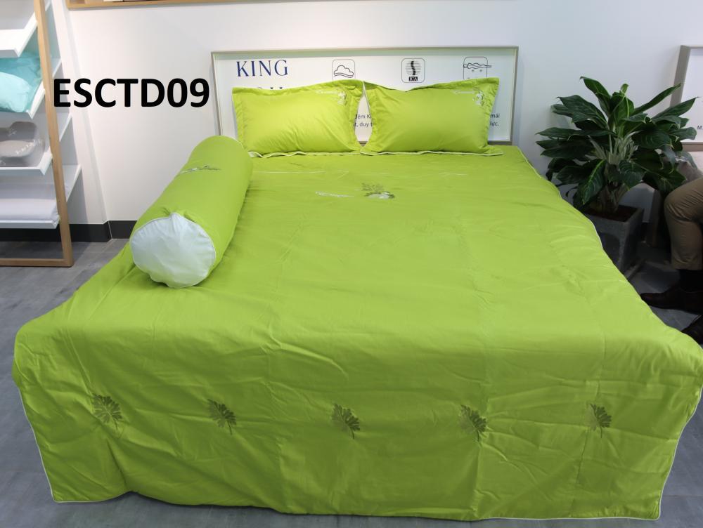ESCTD09