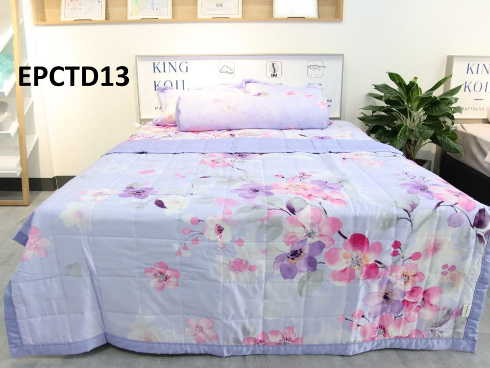 EPCTD013